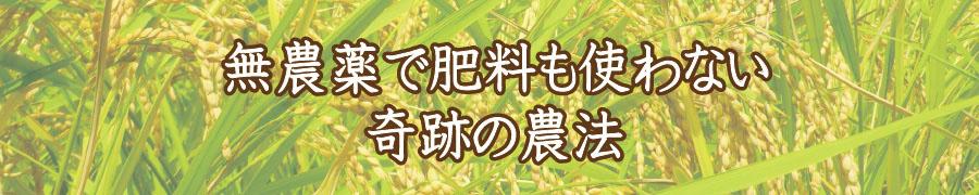無農薬で肥料も使わない