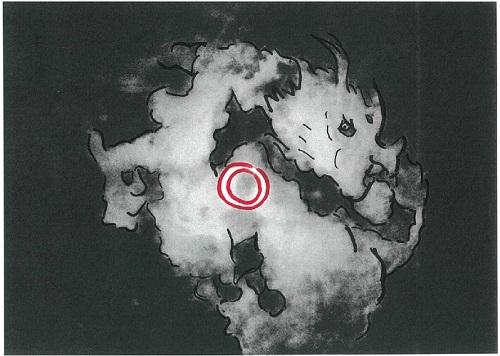 金環龍イメージ-001