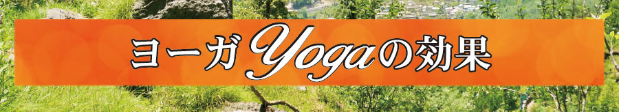 Yogaヨーガの効果