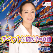 nakano-igakushinzui-正方形