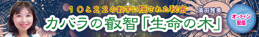 廣田858×124