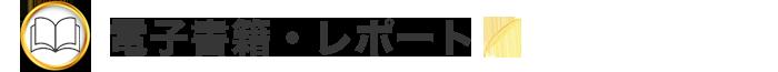 tokusen-report